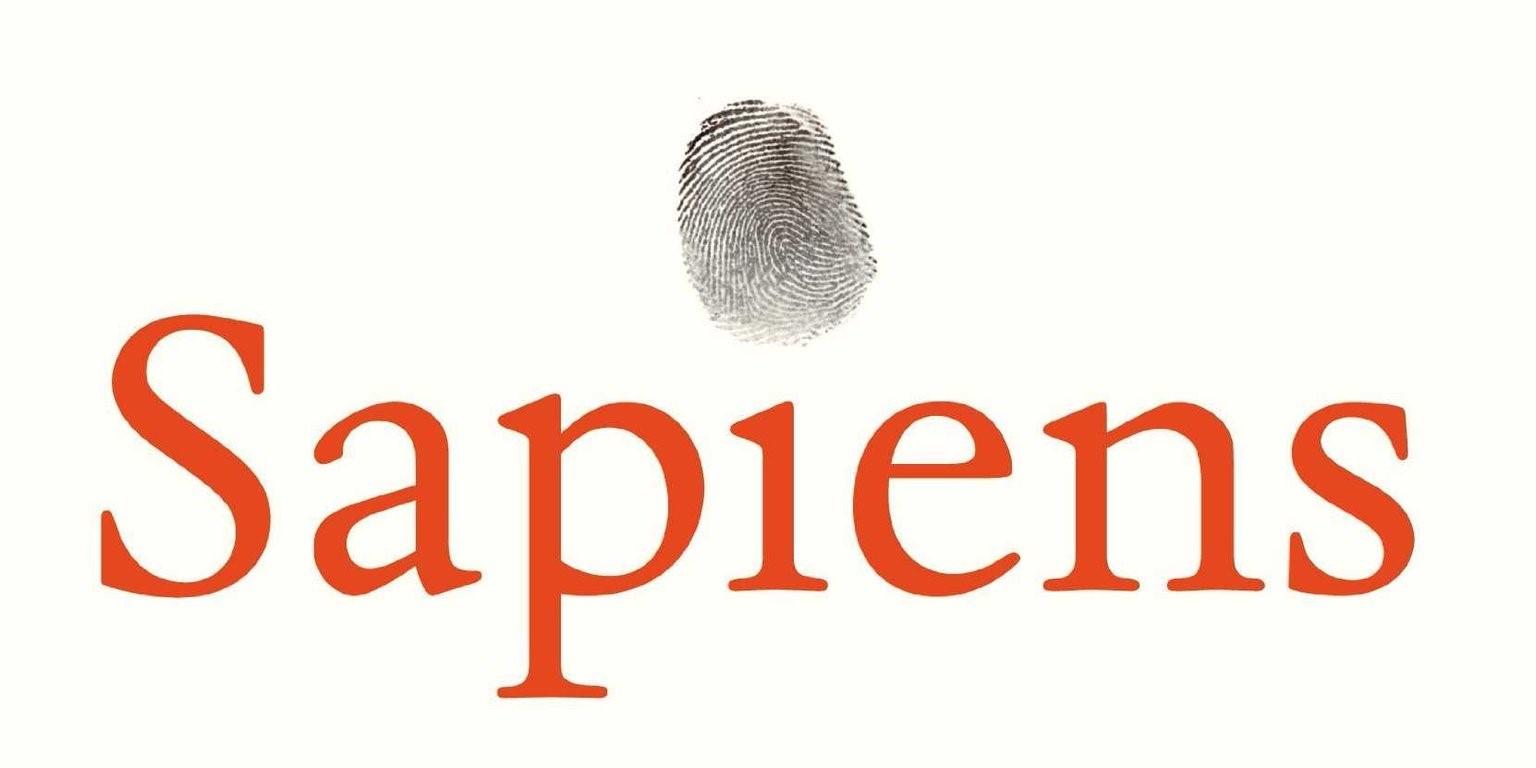 számvető könyvklub sapiens
